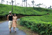 Tea and coffee tour in india